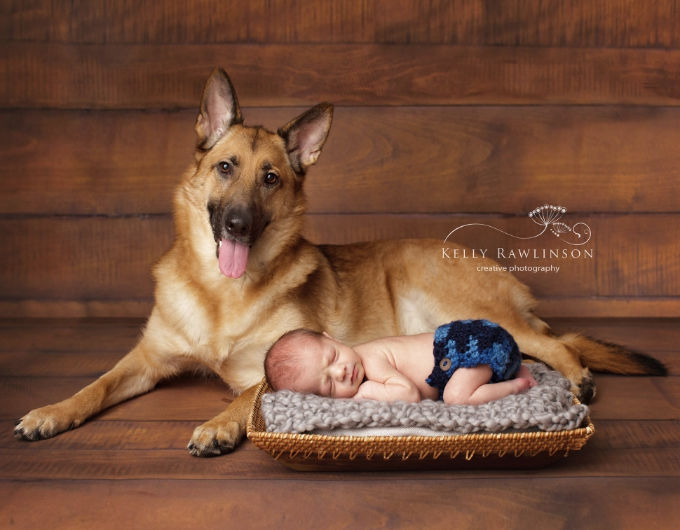 newborn and pet portraits bradford sutton keswick